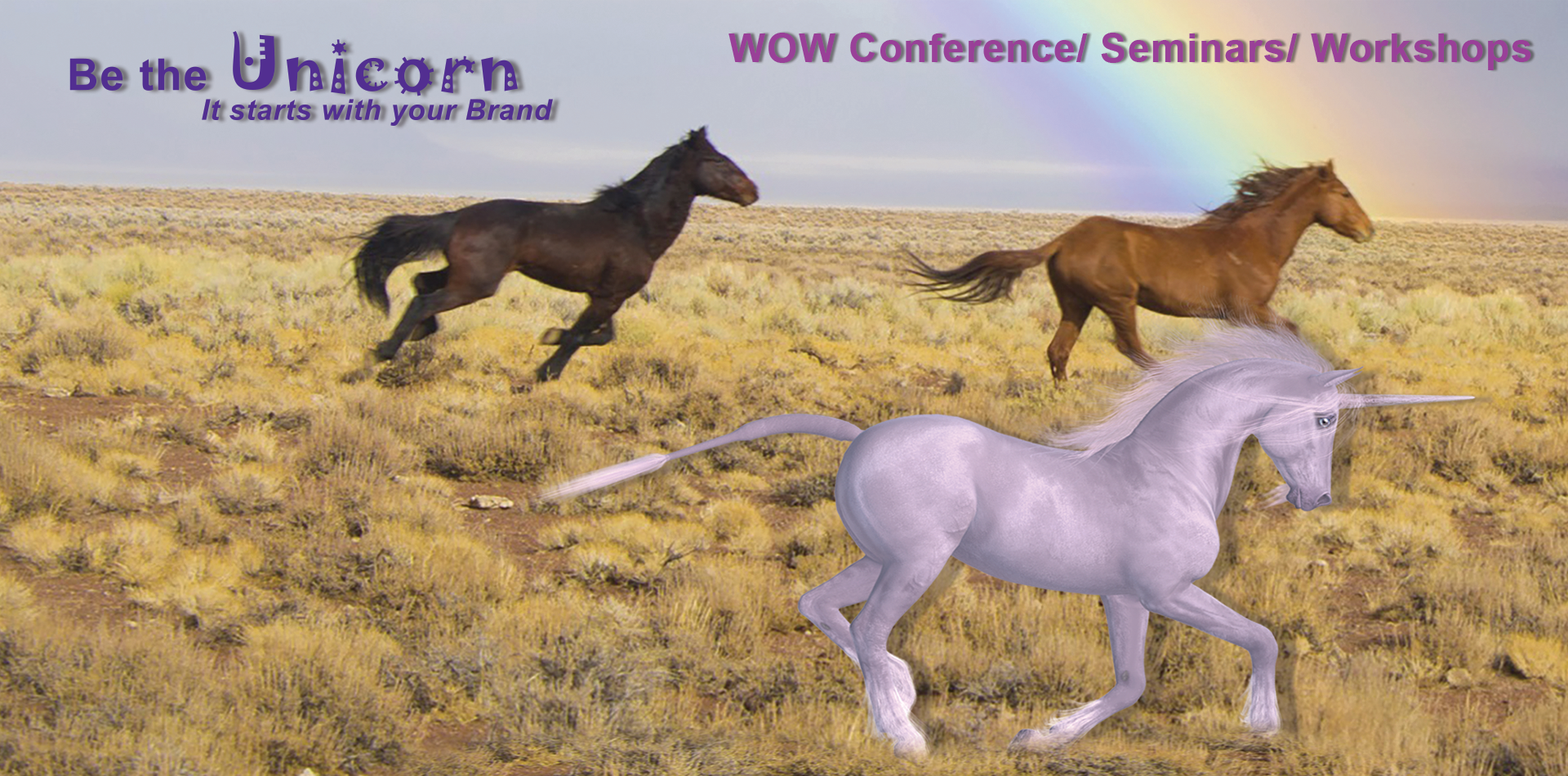 WOW Conference speaker